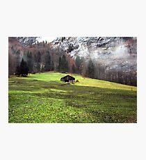 Suisse #5 Photographic Print