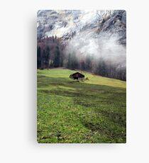 Suisse #6 Canvas Print