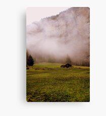 Suisse #7 Canvas Print