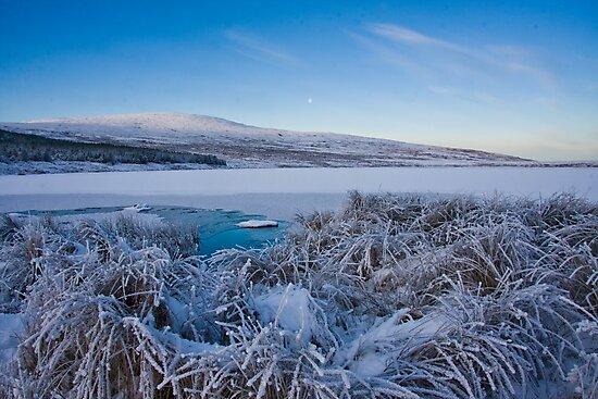 frosty by conalmcginley