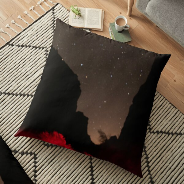 New Mexico Night Floor Pillow