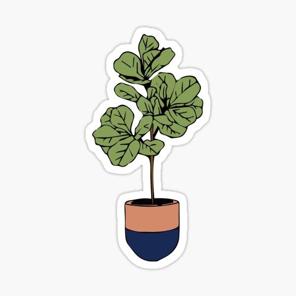 Fiddle Leaf Tree Sticker