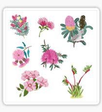 Australian Native Flowers and Birds Sticker Sheet - Aussie Stickers - Mini Floral Stickers Sticker