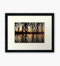 Willow Sunset Framed Print
