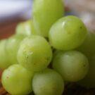 Grape by Bonnie Foehr