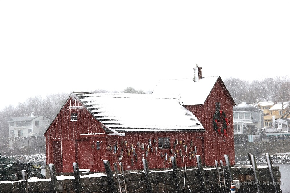 Motif #1 in the Winter by Michelle Callahan