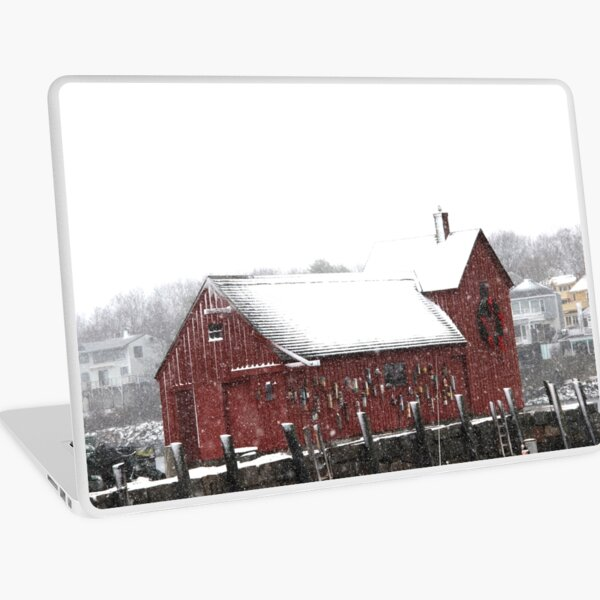 Motif #1 in the Winter Laptop Skin