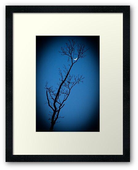 Lune Trou de la Serrure (Keyhole Moon) by Briar Richard