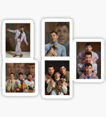 Jonas Brothers Family Portrait Pack Sticker