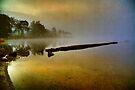 Misty Dawn (Textured) by Karl Williams