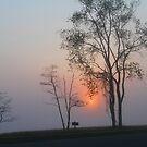 Foggy Sunset by photobear