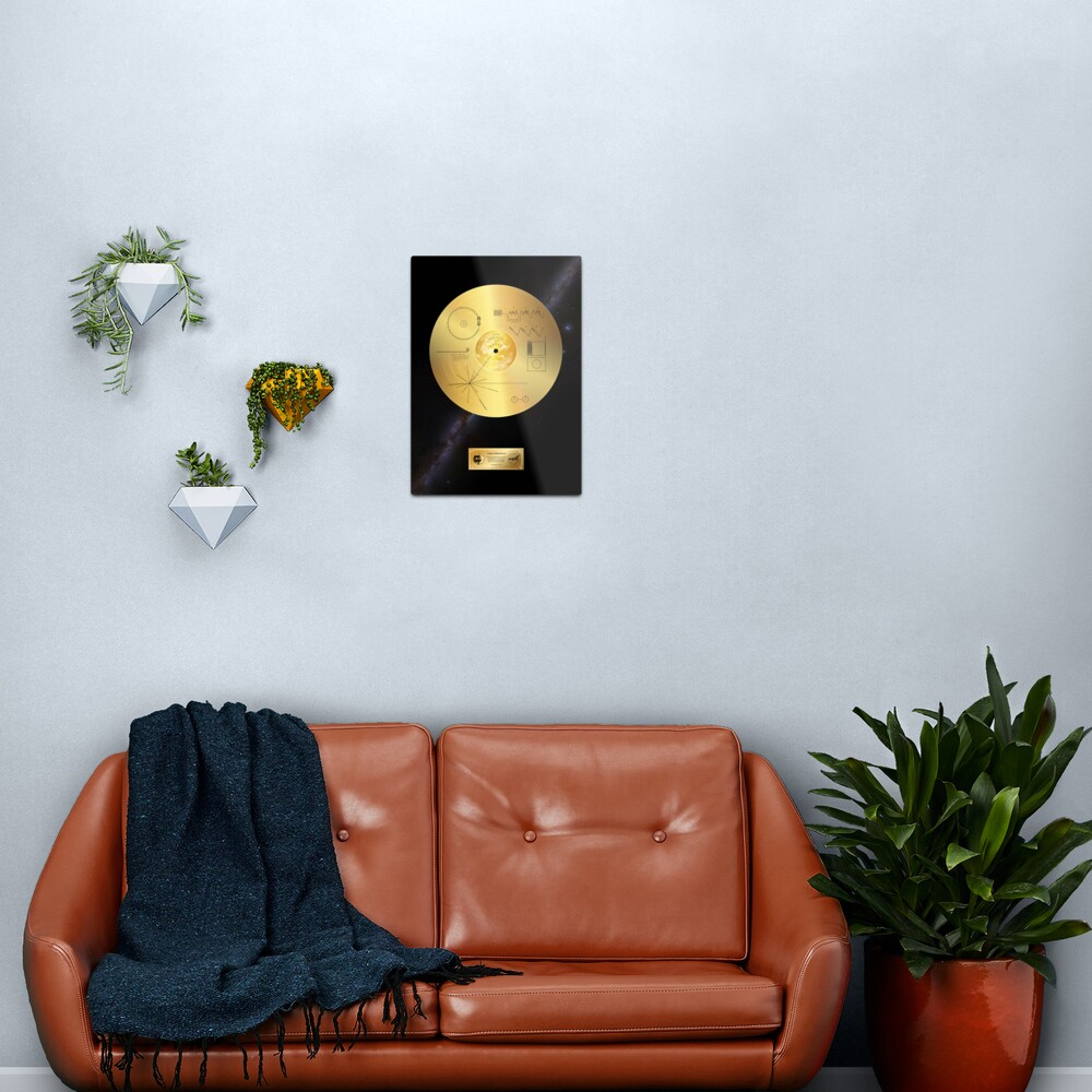 Voyager 1 Golden Record Metal Print