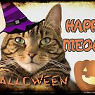 Happy Meowy Halloween  by WiseKitty