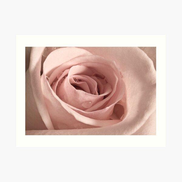Rose, Take my Breath Away Art Print