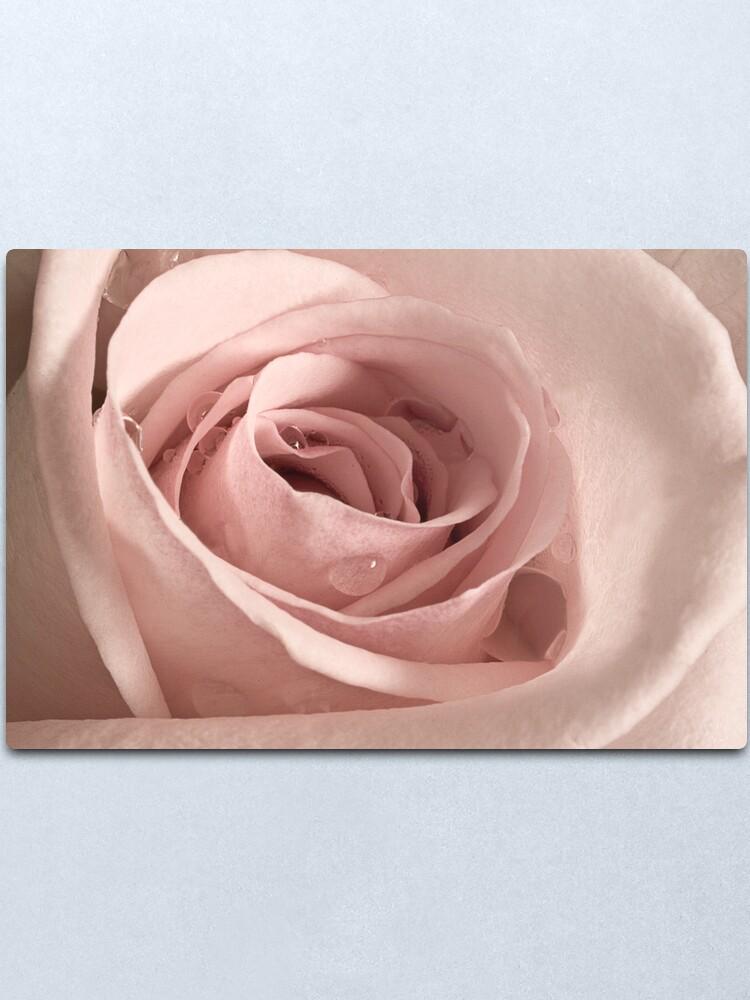 Alternate view of Rose, Take my Breath Away Metal Print