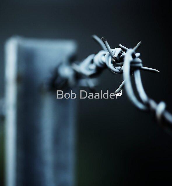 Slashed by Bob Daalder