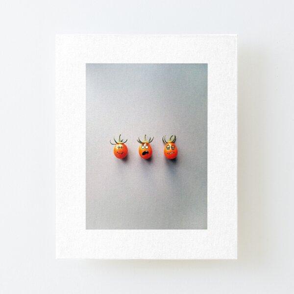 Tomato Canvas Mounted Print