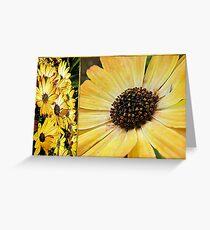 Daisy Diptych Greeting Card