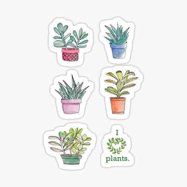 Watercolor Houseplants Sticker