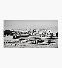 Slices of winter # 8 Photographic Print