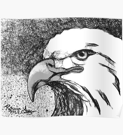 Eagle Scribble Poster