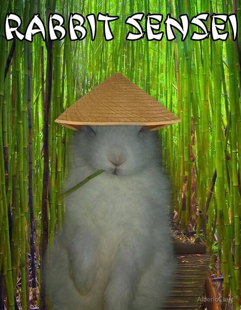 Rabbit Sensei by AlberioCraft