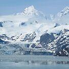 Glacier Bay, ALASKA by AnnDixon