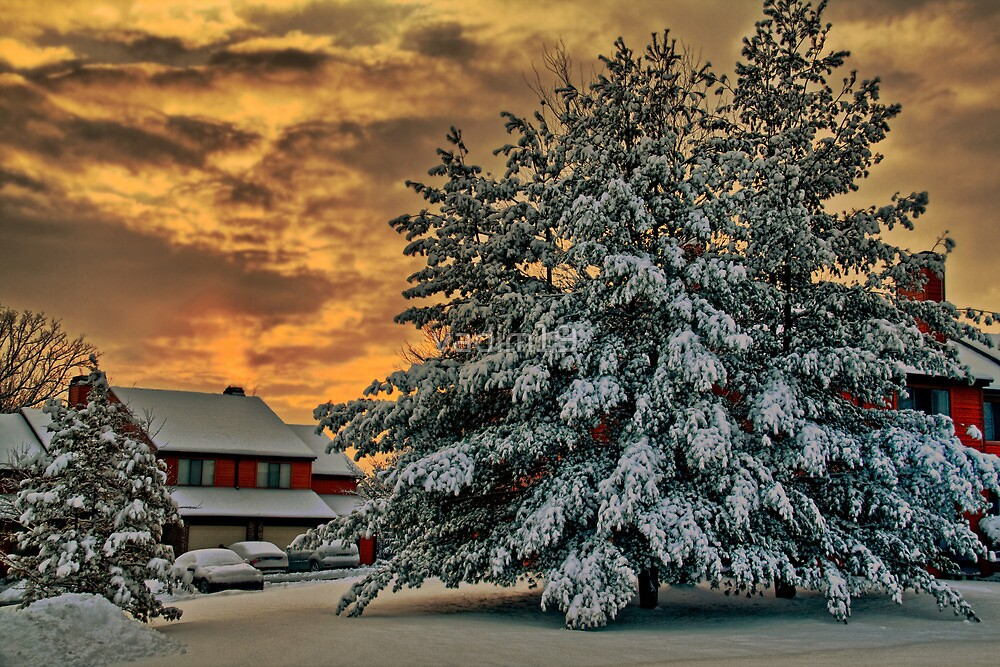 Winter Sunrise by vadim19