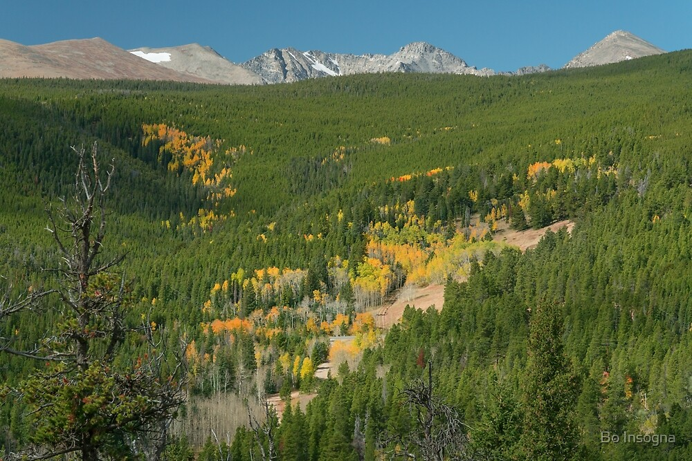 Indian Peaks Autumn Landscape View by Bo Insogna