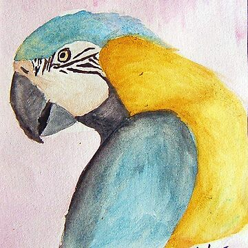 Happy Macaw by Wombie