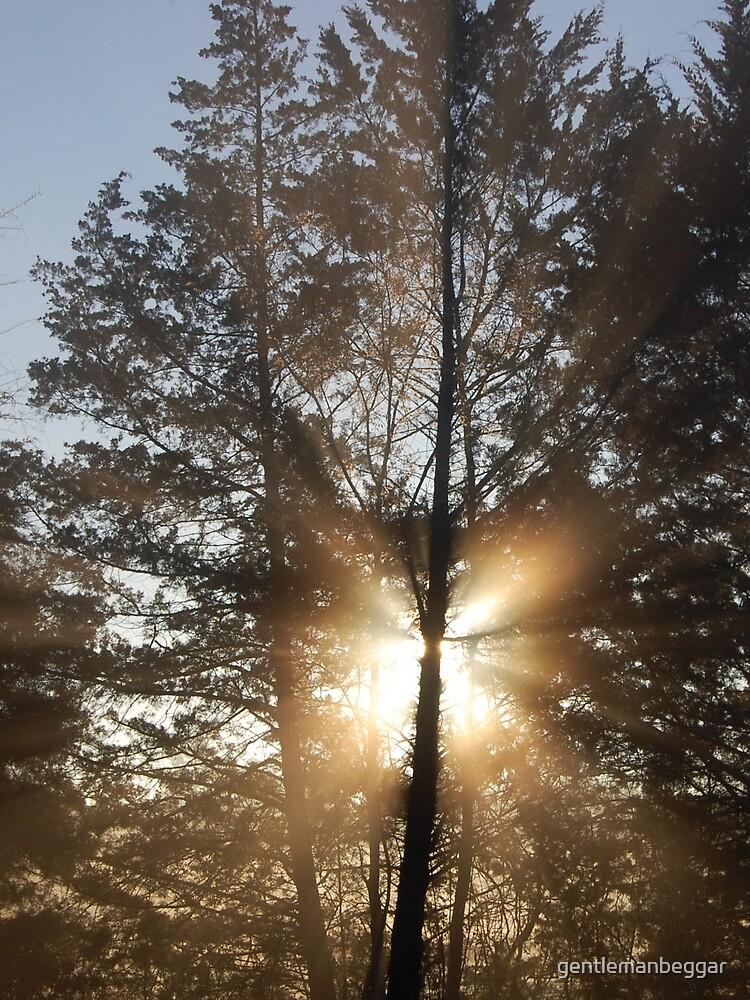 Good morning, sunshine! by gentlemanbeggar