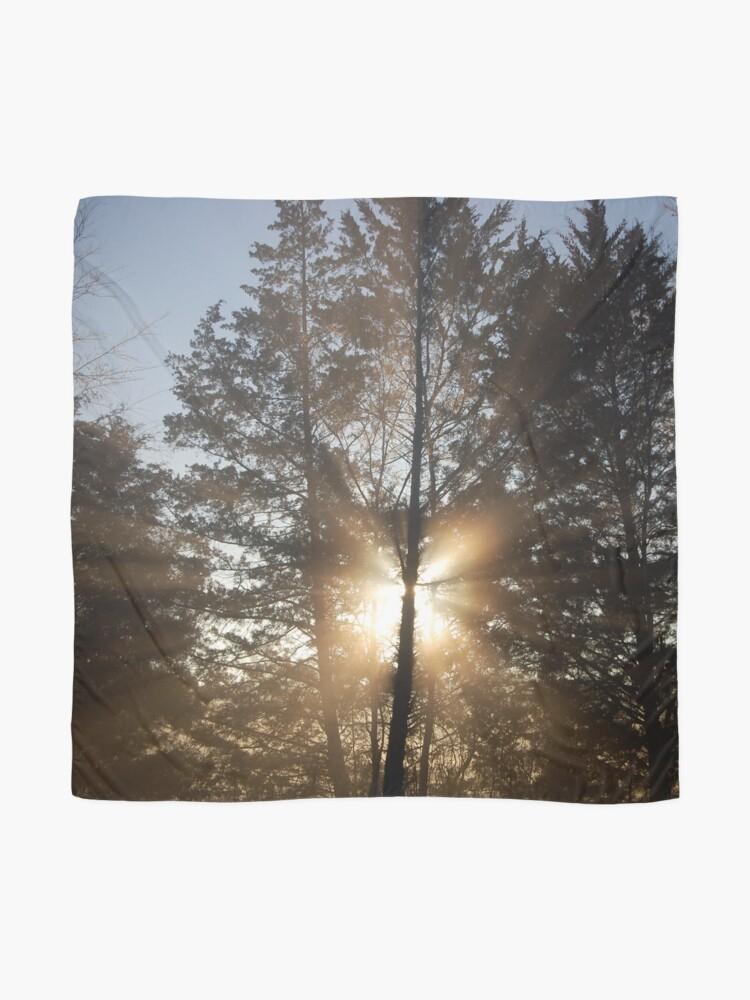 Alternate view of Good morning, sunshine! Scarf