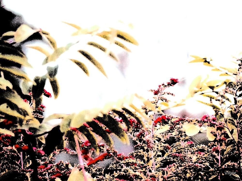 Fall Grass 1 by vigor