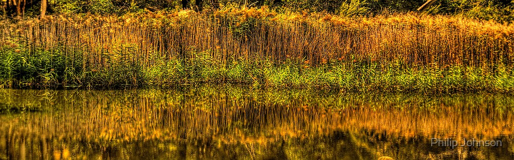 Reflections In Time - Tidbinbilla Wetlands, Canberra ACT - The HDR Experience by Philip Johnson