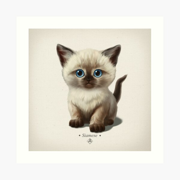 Cataclysm- Siamese Kitten Classic Art Print