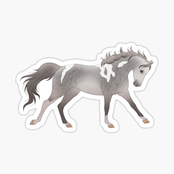 Horse pony american paint horse galop wild free mustang Sticker
