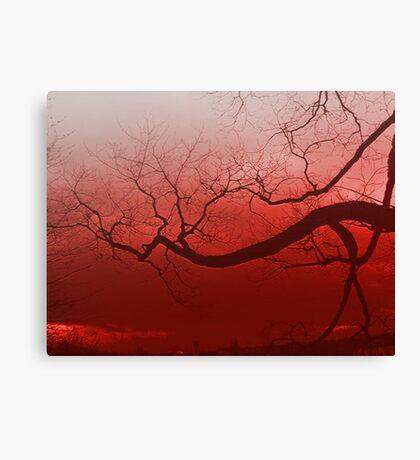 Summer tree in spain Canvas Print