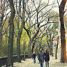 Central Park Love, New York City by Ashlee Betteridge