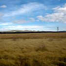 Arizona Landscape by Ashlee Betteridge