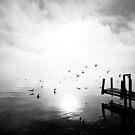 Lake Lugano by Mark Howells-Mead