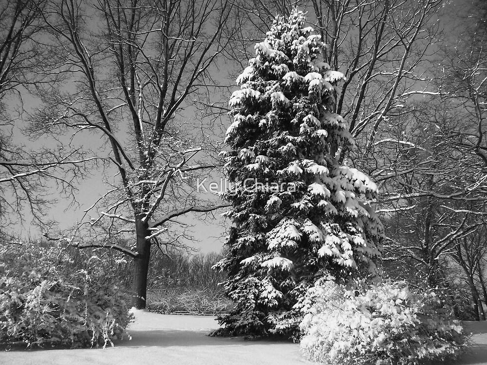 Winter of My Soul by Kelly Chiara