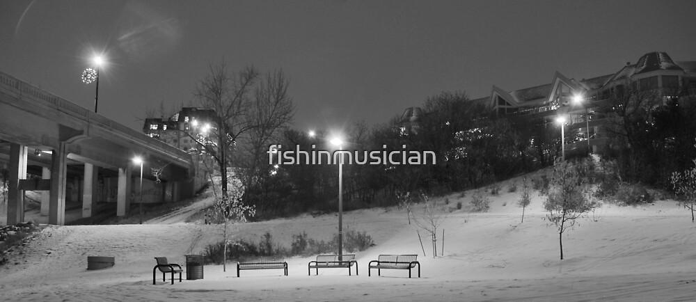 Silent Night 3 by fishinmusician