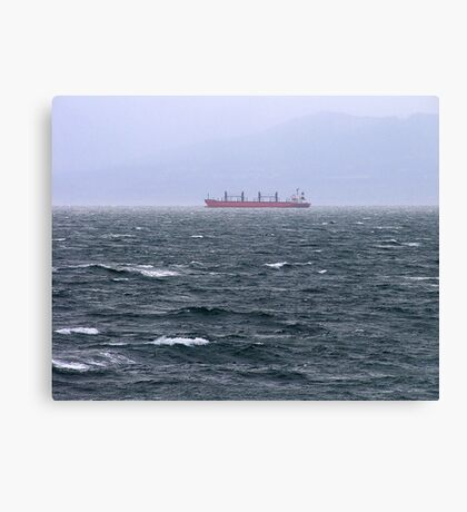 Almost Landfall Canvas Print