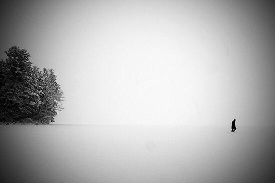 Self Portrait, China Lake, Maine by McSquishyface