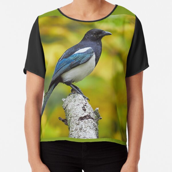 Eurasian magpie pose with colors of Fall Chiffon Top