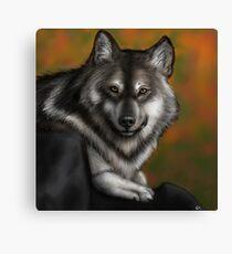 Timber Wolf - Autumnal  Canvas Print