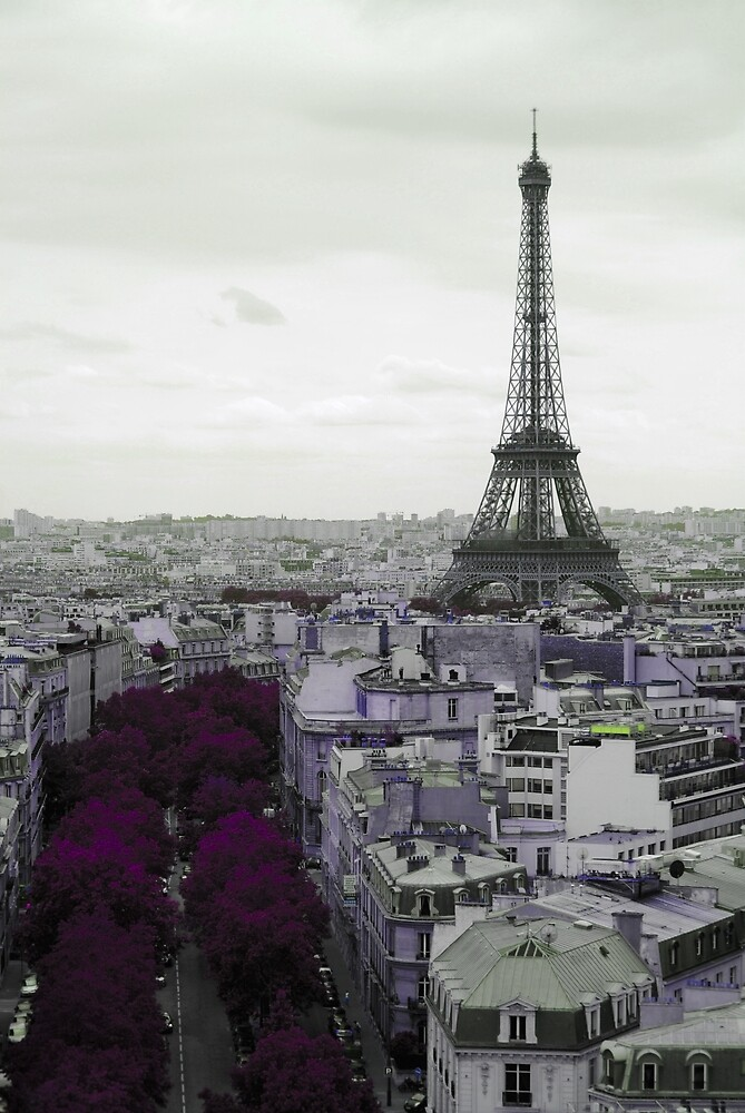 Purple Paris Landscape by 14kutlin