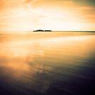 Light, seeking light, doth light of light beguile by Rhana Griffin