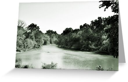 Des Plaines River, Riverside, IL by brian gregory