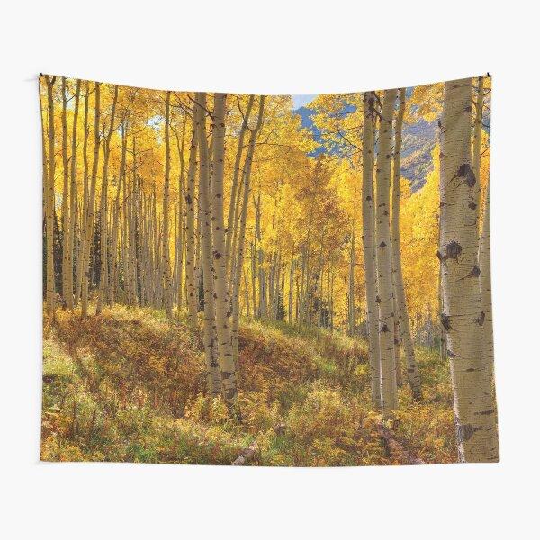 Autumn Aspen Forest Aspen Colorado Panorama Tapestry